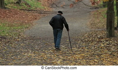 Old man walks in an autumn park with a cane(720p, 25fps)