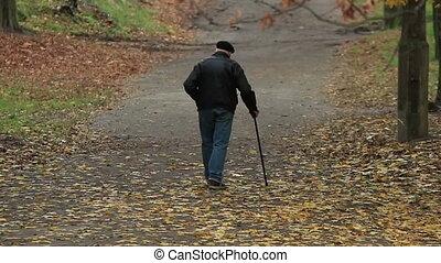 Old Man Walks In Autumn Park - Old man walks in an autumn...