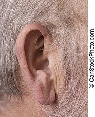 old mans ear