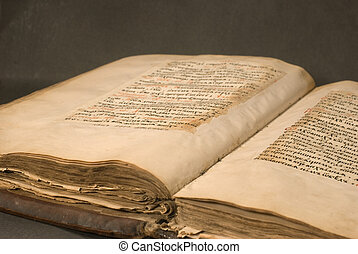 old manuscript - old open brown made of eather lying book
