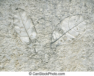 old marks of leaf on the gray concrete background