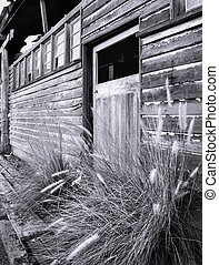 An old timber wall and door of a disused office and workshop building at the now closed gold mine, Mount Morgan Mine, Central Queensland, Australia