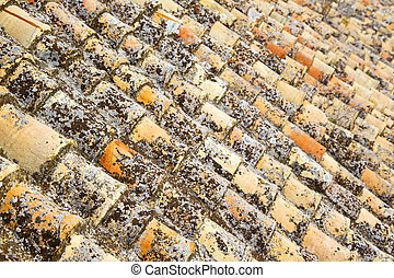 old moroccan tile roof in the