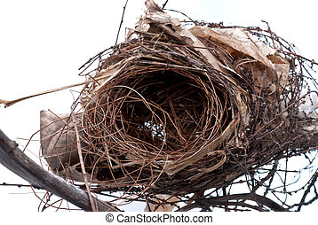 old nest - Old bird nest close up view.