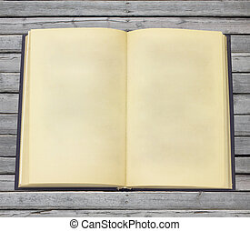 Old open book with blank pages