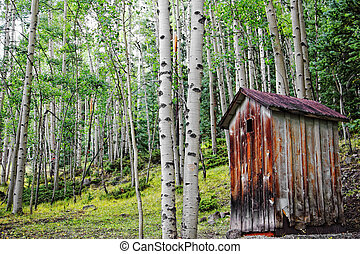 An old, rundown outhouse sits among a forest of Aspen trees in the Colorado mountains - a remnant of a Colorado ghost town.