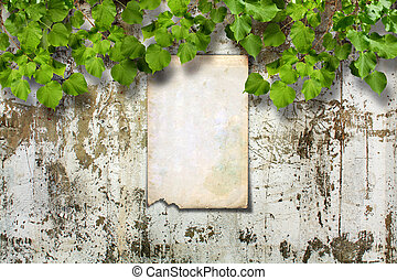 Old paper ad on ruined stone wall with a bright green foliage