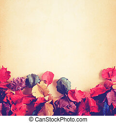 old paper background with dry flower, retro filter effect