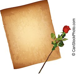 Old Paper Parchment and Highly Detailed Red Rose
