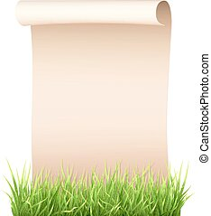 old paper sheet in green grass