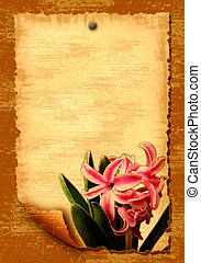 Old paper with flowers - Old paper blank leaf with flowers