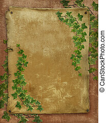 Parchment paper with ivy - old Parchment paper with ivy...