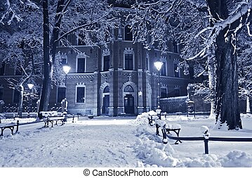 Old Park in Winter