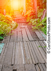 old path wood bridge in deep forest crossing water with glowing light at the end of wooden walk way