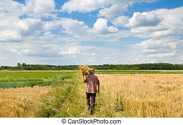 Old man with knitted basket on shoulder walking in field