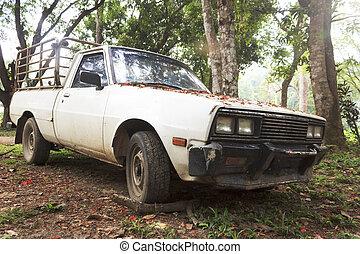 Old pickup wreck