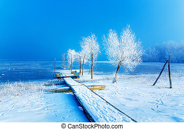 Old pier construction and beautiful frozen trees.