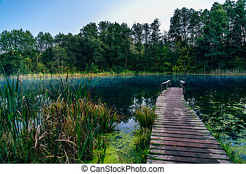 Old pier on blue forest lake