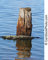 old pile on the lake