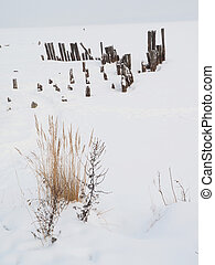 old piles on the lake in winter