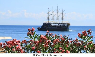 Old pirate frigate and oleander flowers in Kemer, Turkey