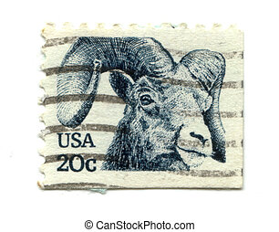 old postage stamp from USA Goat