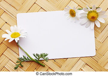 postcard with daisies