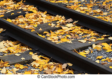 Old railway strewn with yellow fallen leaves at autumn....