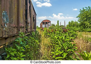 Old railway wagons in the grass