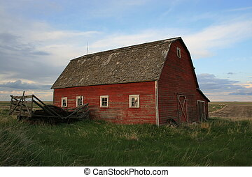 Old red barn on prairie homestead, Alberta, Canada
