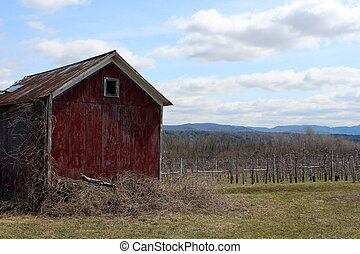 Old red barn under sunny skies