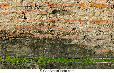 Old red brick wall with moss green