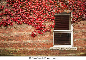 Old red brick wall with wooden window