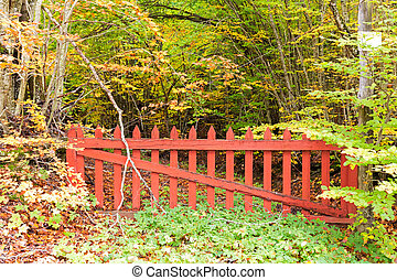old red gate in the woods