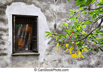 Old residential building and green branch on Pingjianlu, Suzhou, China