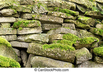 Old rocks with fresh green moss