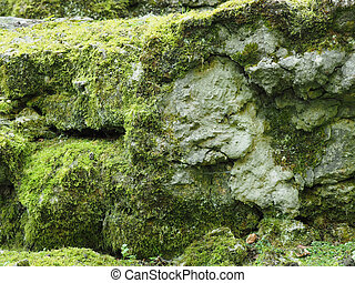 Old rocks with moss