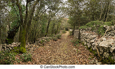 Old roman road in the forest in Cres on a cloudy day in spring
