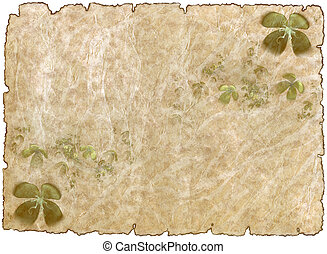 old rough antique parchment paper with shamrock