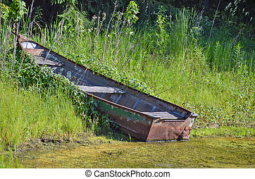 old row boat in weeds
