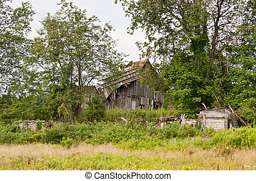 Old Ruined Barn