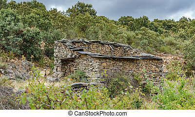 Old ruined watermill