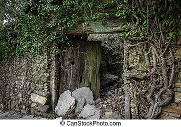 Old ruined wooden door
