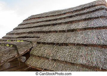 Old rural hut with a thatched roof