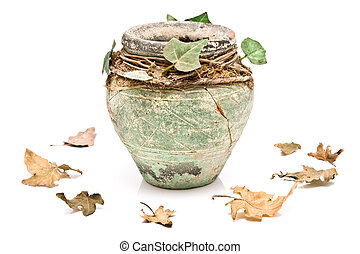 Old rustic clay pot with leaves