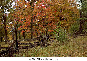 Old Rustic Fence - An old rustic fence in the country with...