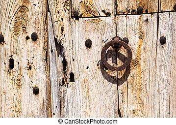 Old Rusty Wooden Doors (2)