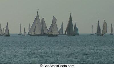 old sail regatta 03