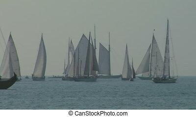 old sail regatta 04