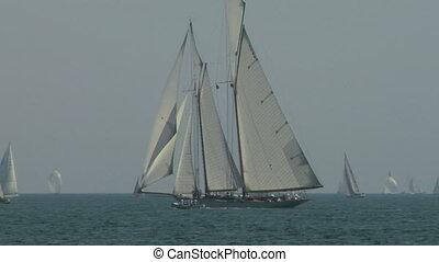 old sail regatta 06